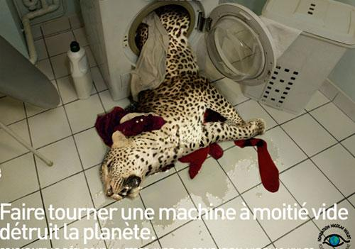 «Запуск полупустой стиральной машины убивает планету»…<br />