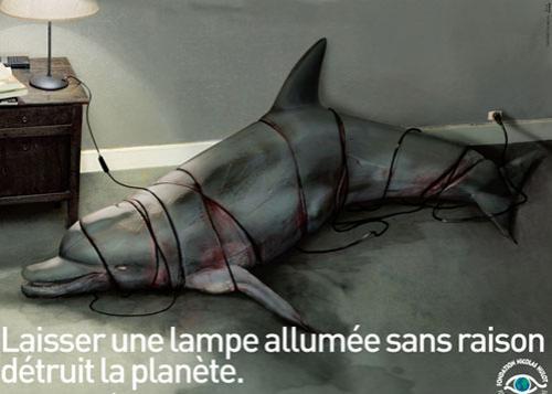 «Не выключенный без причины свет убивает планету»…